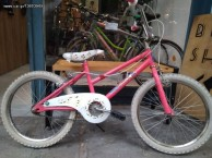 Photo for Other Bmx pampas